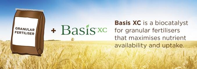 BasisXC biocatalyst