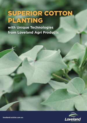 Cotton Planting Guide Image