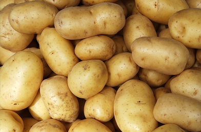 Featured_Studies_Potatoes.png