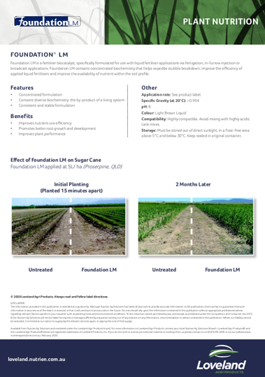 Foundation LM Sugar Cane Study Image
