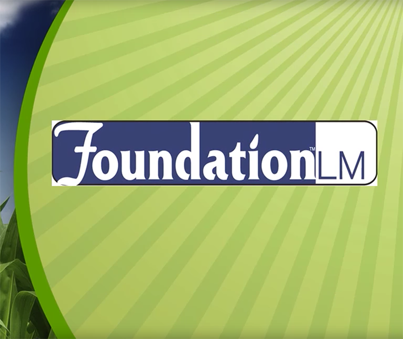 Foundation_Videos.png