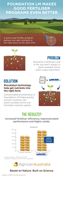 Foundation_infographic-thumb.png