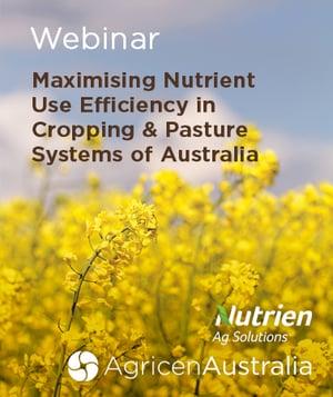 Maximising Nutrient Use Efficiency Image