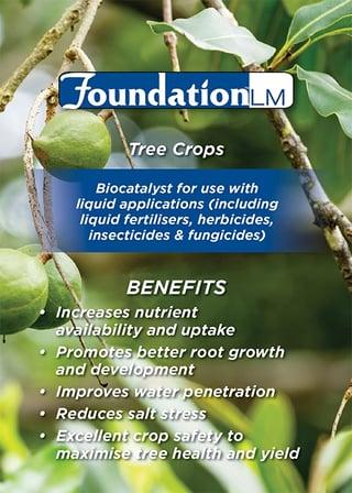 foundation_hort_crops.png