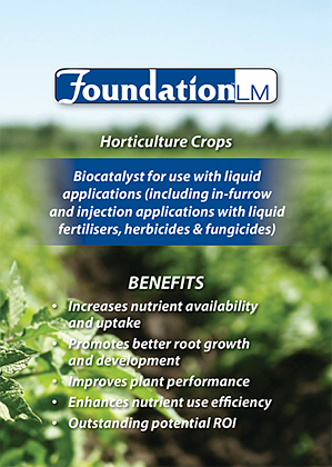 foundation_hort_crops.png