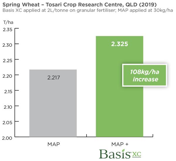 spring wheat Basis