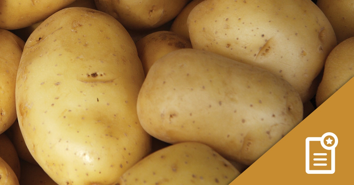 Foundation LM Potato Study